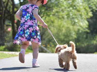 超大型犬でも小型犬でもいいね!全犬種対応!大切な家族皆で一緒にお泊りだワン♪